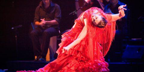 mejor-flamenco-granada